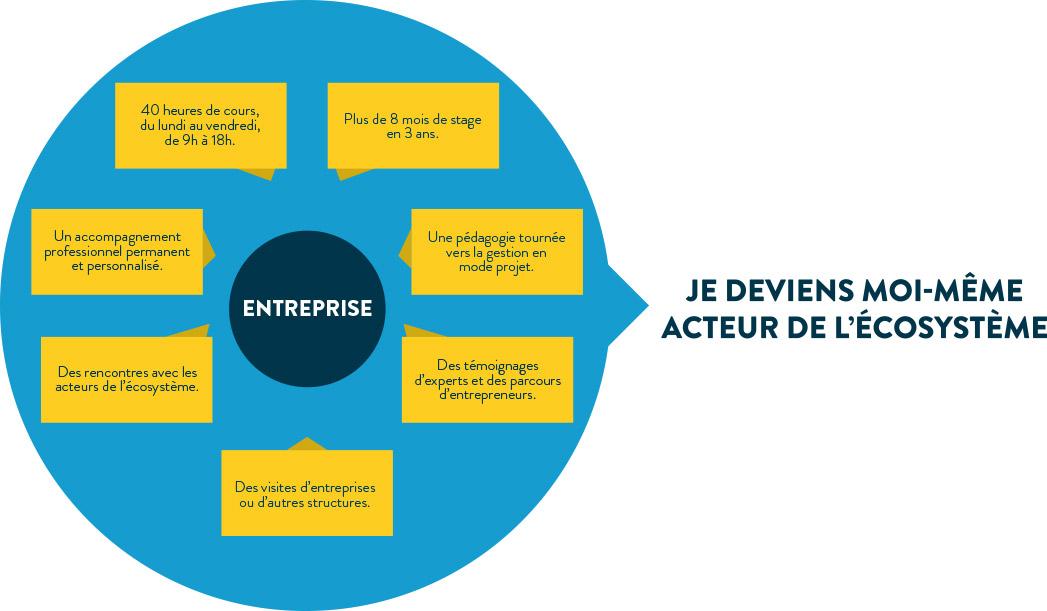 graph_entreprise